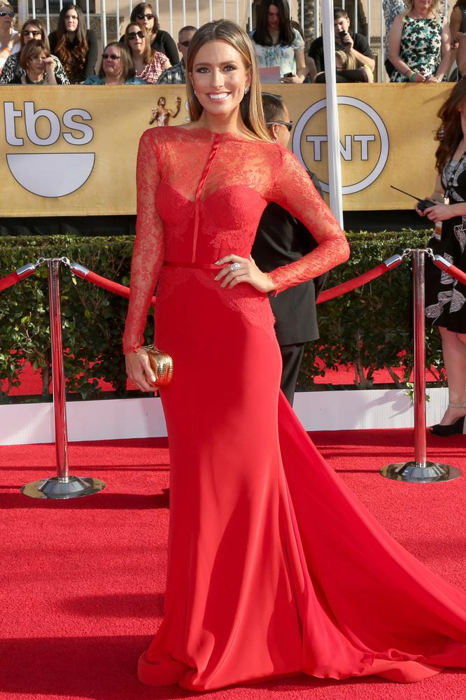 Renee Bargh-SAG Awards-2014-Best-Dressed