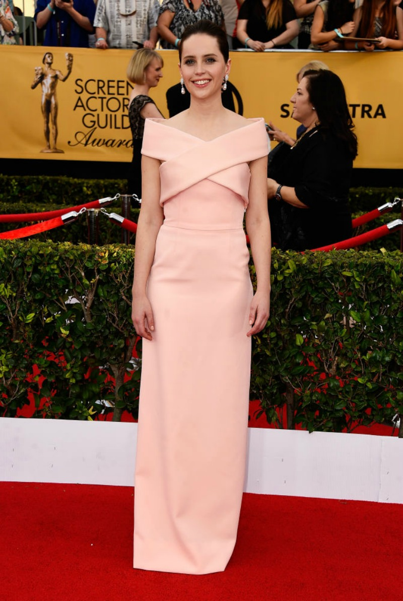Top 10 Best Dressed SAG Awards 2015
